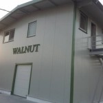 sediu_walnut